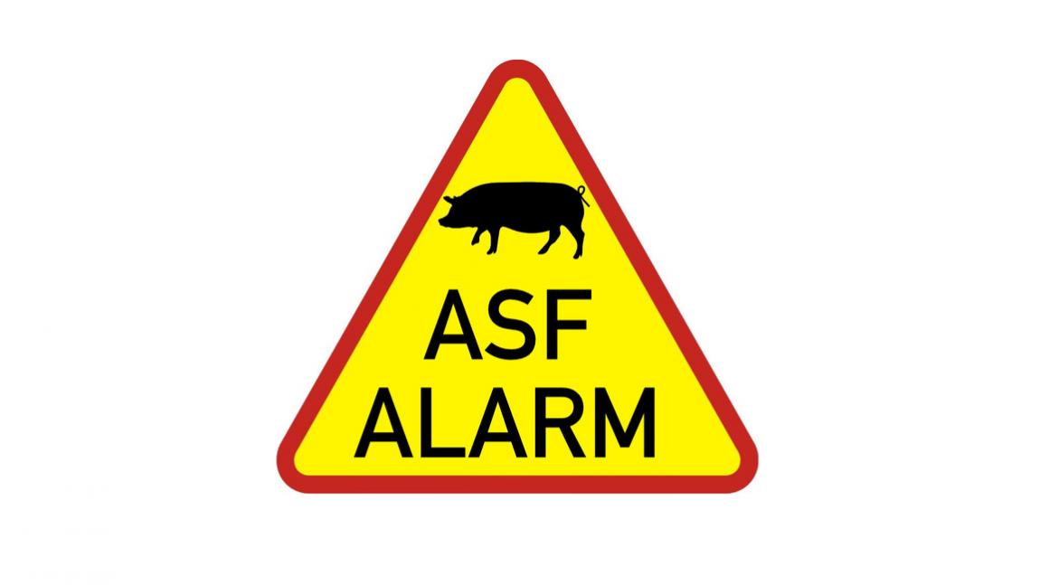 INFORMACJA O ASF dostępna na naszej stronie.